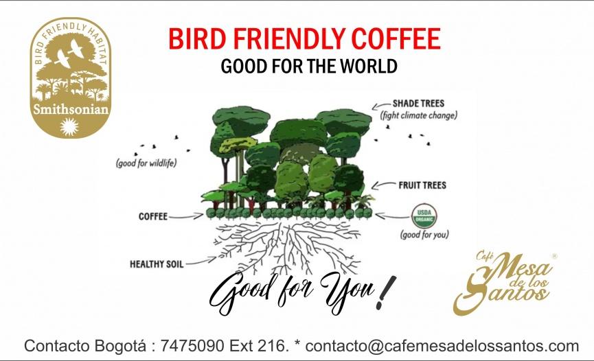 BIRD FRIENDLY REDES